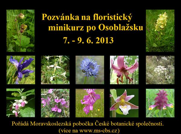 pozvánka nafloristický minikurz 2013
