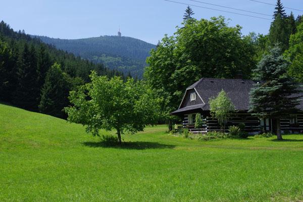Údolím řeky Mohelnice – floristicko-bryologická exkurze – krátký ...